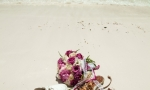 wedding_cap_cana_52-jpg