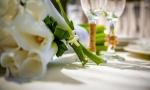 wedding_in_dominican_11