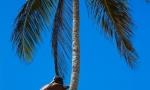 playa_macao_olga-and_eduard_24