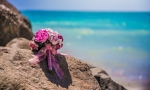 wedding_photographer_punta_cana_01